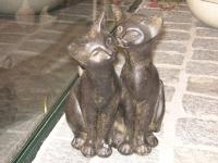 acc29_Katzenpaar